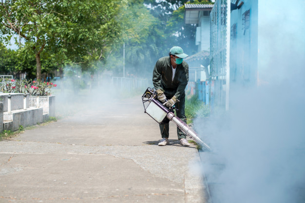 man eliminating pests by spraying pesticides